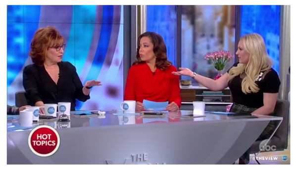 Meghan McCain Finally Explodes and Blasts Joy Behar with a Healthy Dose of the Truth!